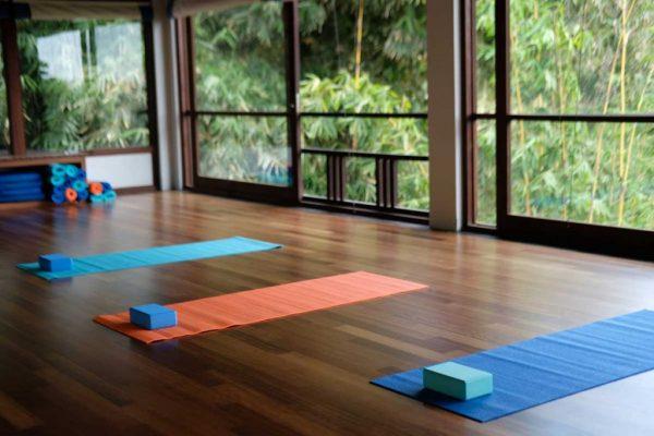 yoga-1-new