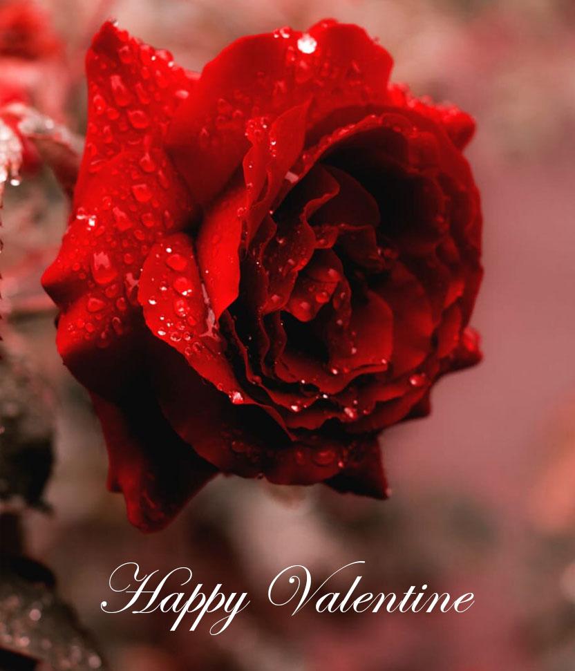 valentine-package